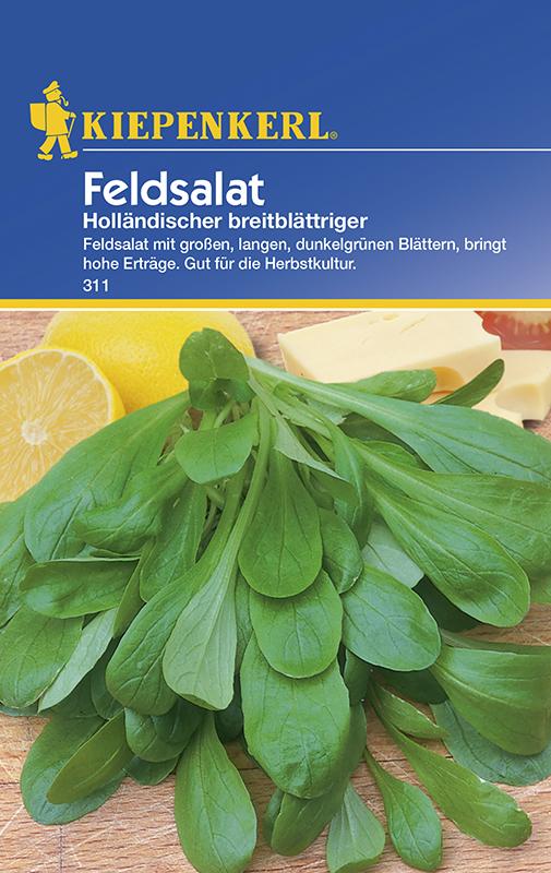 Salat Feldsalat MHD 01//22 Saatband Kiepenkerl 2446 Favor