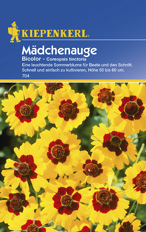 Mädchenauge * Bicolor * Coreopsis Bauerngarten Kiepenkerl 704