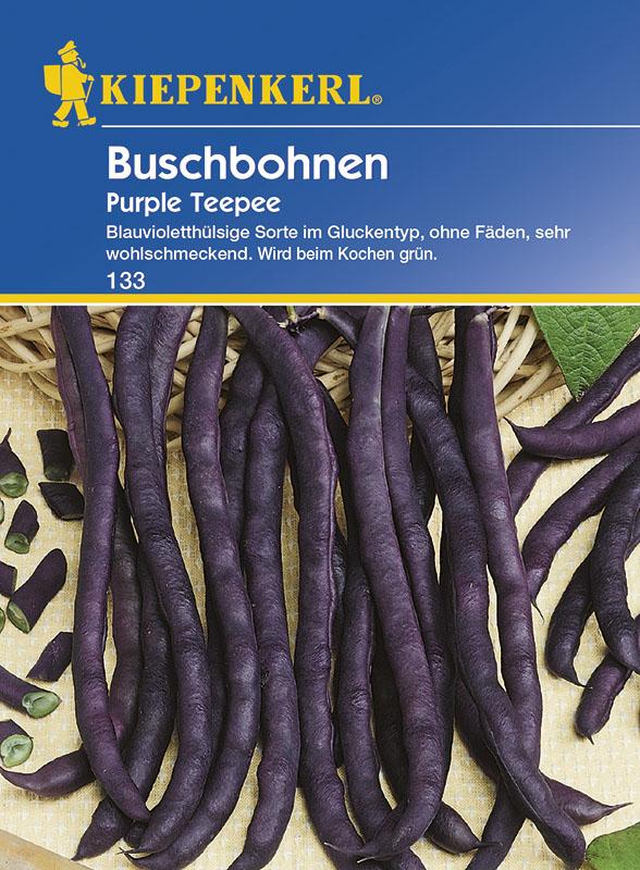 """Kiepenkerl BUSCHBOHNE /"""" Wachs Voletta  /"""" 146 ertragreich  SAMEN Sämereien Bohnen"""