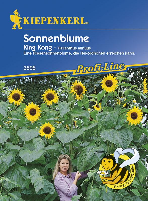 Sonnenblume * King Kong * Riesensonnenblume Helianthus Kiepenkerl 3598