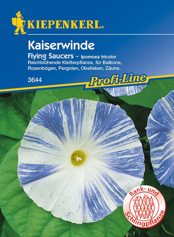 Winden Kaiserwinde * Flying Saucers * Ipomoea Kiepenkerl 3644